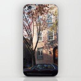 Organic Brownstone iPhone Skin