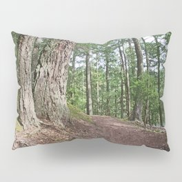 WOODED PATHWAY BY THE LAKE Pillow Sham