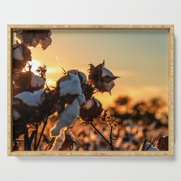 Cotton Field 12 Serving Tray