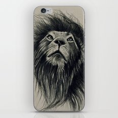 Fabulous iPhone & iPod Skin