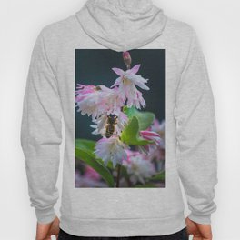 Scent of Spring Hoody