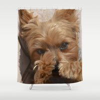 yorkie Shower Curtains featuring Put Em' Up - The Yorkie Dog by ATXperspective