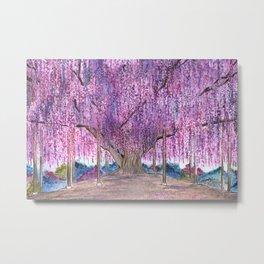 150+ Years Old Wisteria Tree – Sacred Tree Series Metal Print