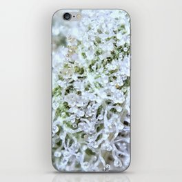 Full Trichomes iPhone Skin
