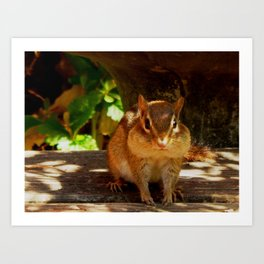 Chippy #2 Art Print