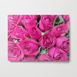 Bright pink roses in summer Metal Print