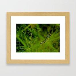 Munch Framed Art Print