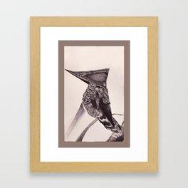 Pyramid Headed Hummingbird Framed Art Print