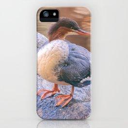 merganser iPhone Case