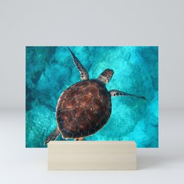 Swimming Turtle Mini Art Print