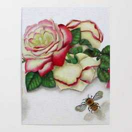 French Perfume Rose Swag Bee Art Poster