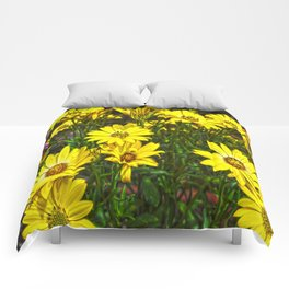 daisys flowers Comforters