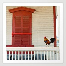 Key West Rooster Art Print