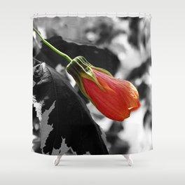 Hibiscus Bud Shower Curtain
