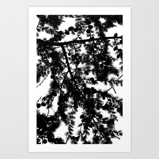 B&W Evergreen Art Print