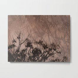 Branches in the Sky-Brown Metal Print