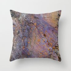 Colors of the Earth Throw Pillow