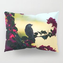 House Sparrow in the Evening Light Pillow Sham