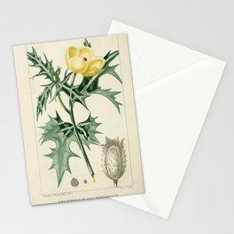 Flower argemone du mexique (Fr)13 Stationery Cards