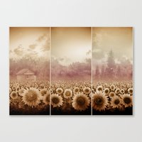 sunflowers Canvas Prints featuring sunflowers by Bekim ART