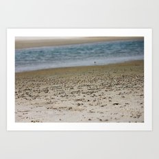 Crab Beach Art Print