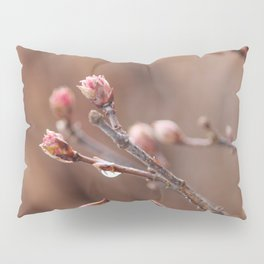 New Life -  Fresh Spring Buds after rain, Rose and earth tones, Nature Photography Macro Pillow Sham