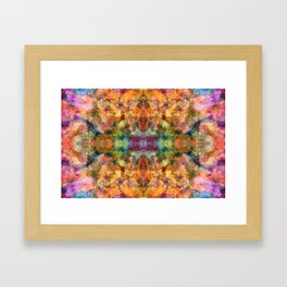 Royalush Framed Art Print