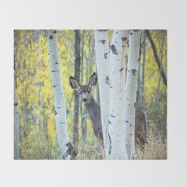 Hide and Seek - Young Mule Deer Among Aspen Trees in Western Colorado Throw Blanket
