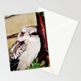 Sleeping Kookaburra Stationery Cards