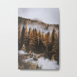CLOUDY DAY AND TREES DURING DAWN TIME Metal Print