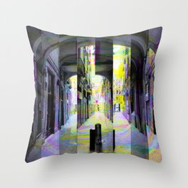 Tuesday 28 May 2013: After a runin regarding that public private limit. Throw Pillow