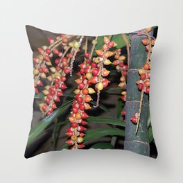 coffee plant (Bali, Indonesia) Throw Pillow