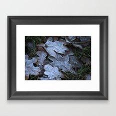 Frost Leaf Framed Art Print