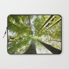 The Redwood National and State Parks Laptop Sleeve
