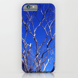 Dead Tree Defiance iPhone Case