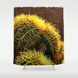 Golden Ball Cactus in Early Morning Light Shower Curtain