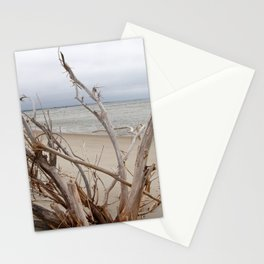 Driftwood, Cloudy Day on the Outer Banks Beach Stationery Cards