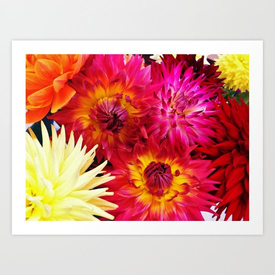 Riot of Colour Art Print