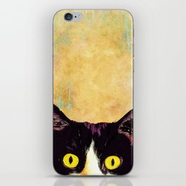 hidden cat 1 iPhone Skin