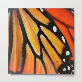 Butterfly Wing Metal Print