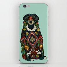 sun bear mint iPhone & iPod Skin