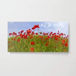 Field of Poppies | panoramic view Metal Print