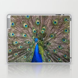Beautiful Peacock Laptop & iPad Skin