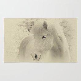 Dreaming Horse Rug