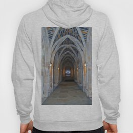 Archway Of Beauty Hoody