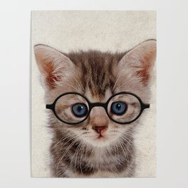 Kitten with Glasses Poster