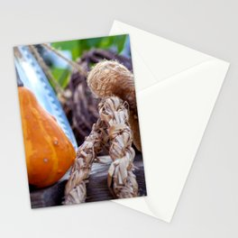 Pumpkin with straw rope Stationery Cards