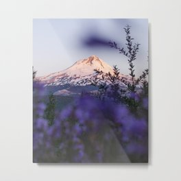 Mt Hood Wildflowers Metal Print