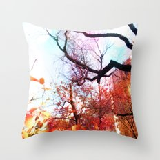 Color Blocked Throw Pillow