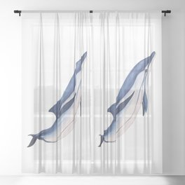 Striped baby dolphin Sheer Curtain